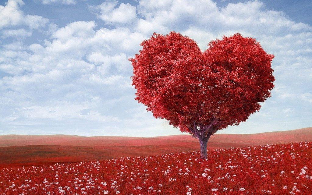 amour et désir