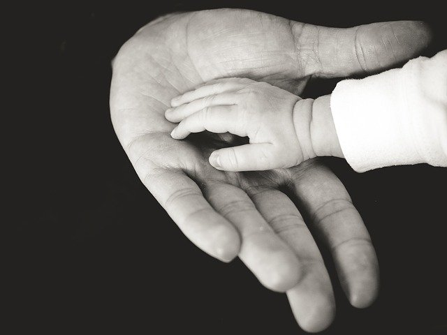 désobéissance aux parents